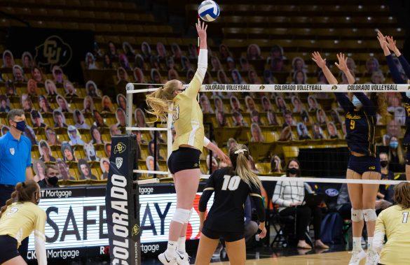 Buffs down Golden Bears in five sets